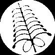 Pittmoss logo icon